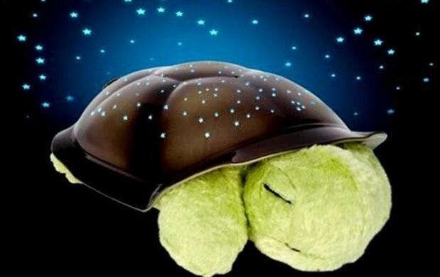 Tortuga light night