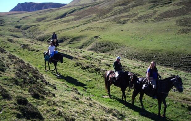 Paseo a caballo o clases de equitación