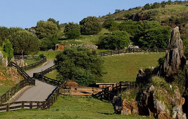 Cantabria: 2 noches para 2 y Cabarceno