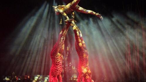 """Entrada al espectáculo """"Salvaje"""" del Circo Italiano del 8 al 17 de junio en Avilés"""