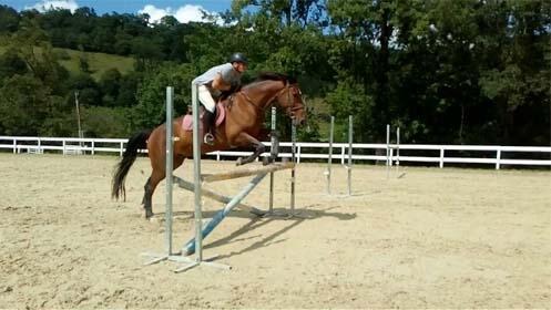 Ruta a caballo o escapada rural con opción a actividades